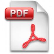 pdf icon large
